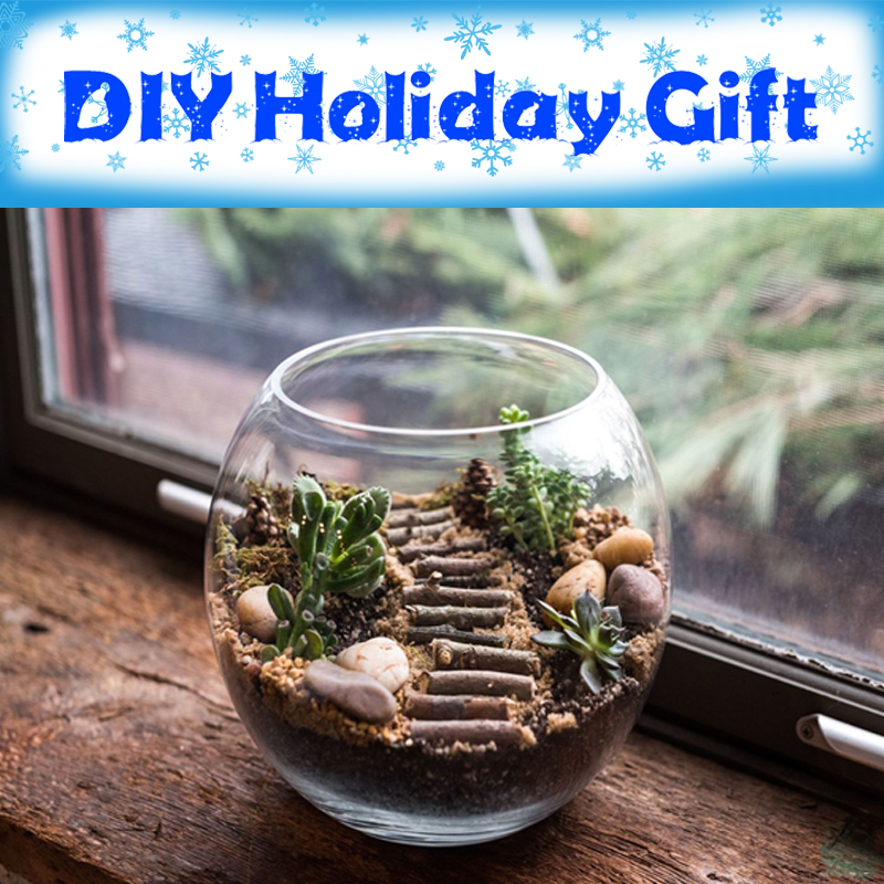 DIY Holiday Gift: Terrarium