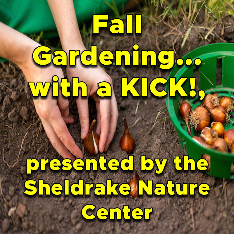 Fall Gardening... with a KICK!, presented by the Sheldrake Nature Center