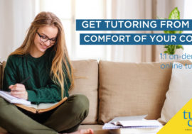 Free help from a real live tutor