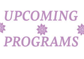 Upcoming Programs January 11th to January 24th