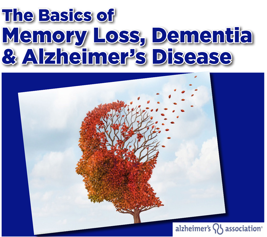 The Basics of memory Loss, Dementia & Alzheimer's Disease