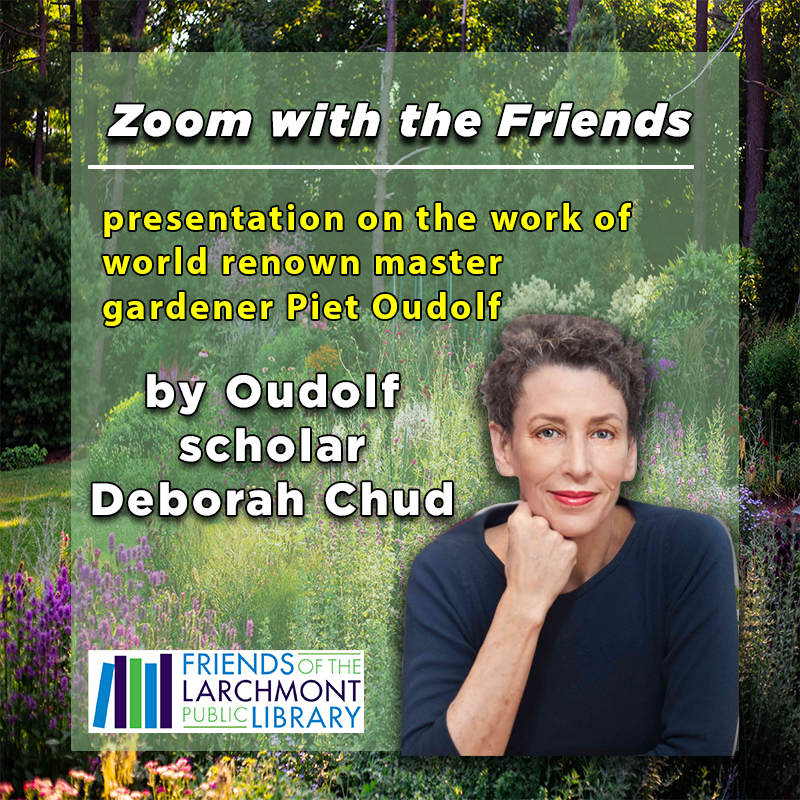 Zoom with the Friends - Deborah Chud