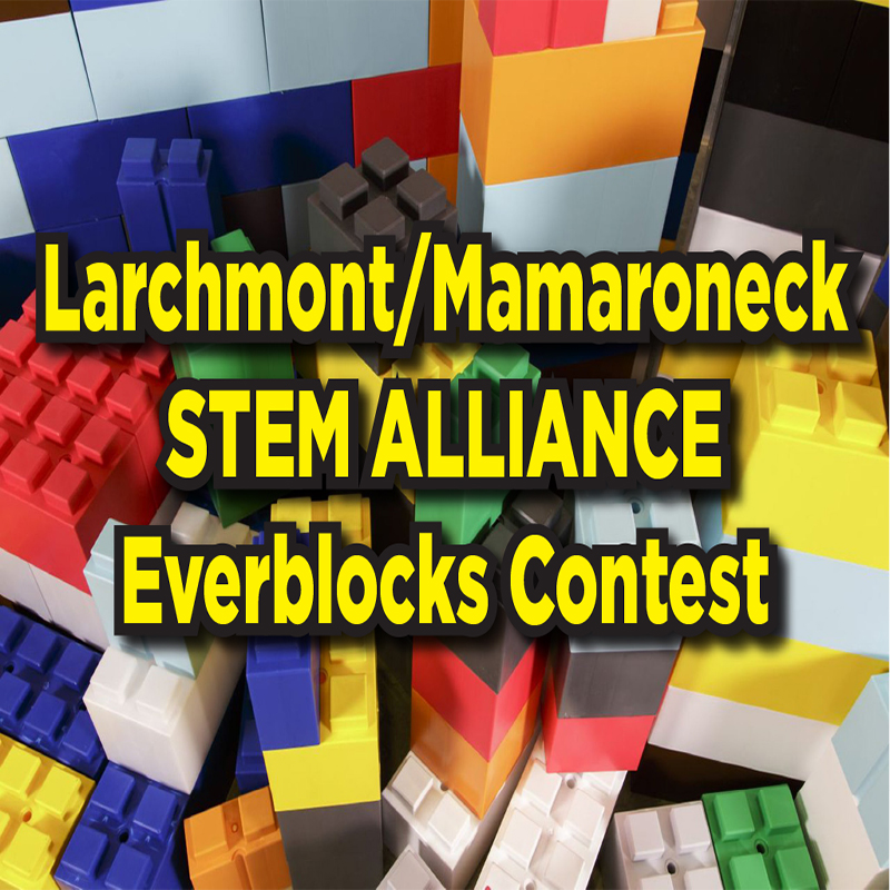 Larchmont/Mamaroneck STEM Alliance Everblocks Contest
