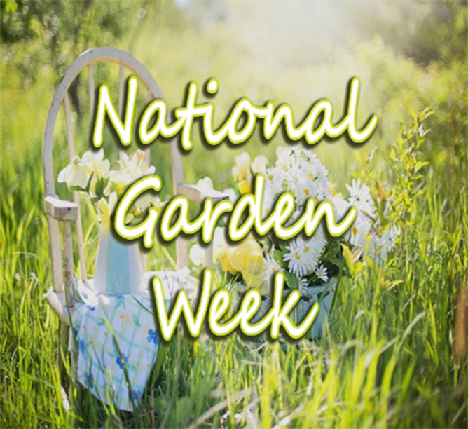 Weirdly Wonderful Holiday Storytime: National Gardening Week!