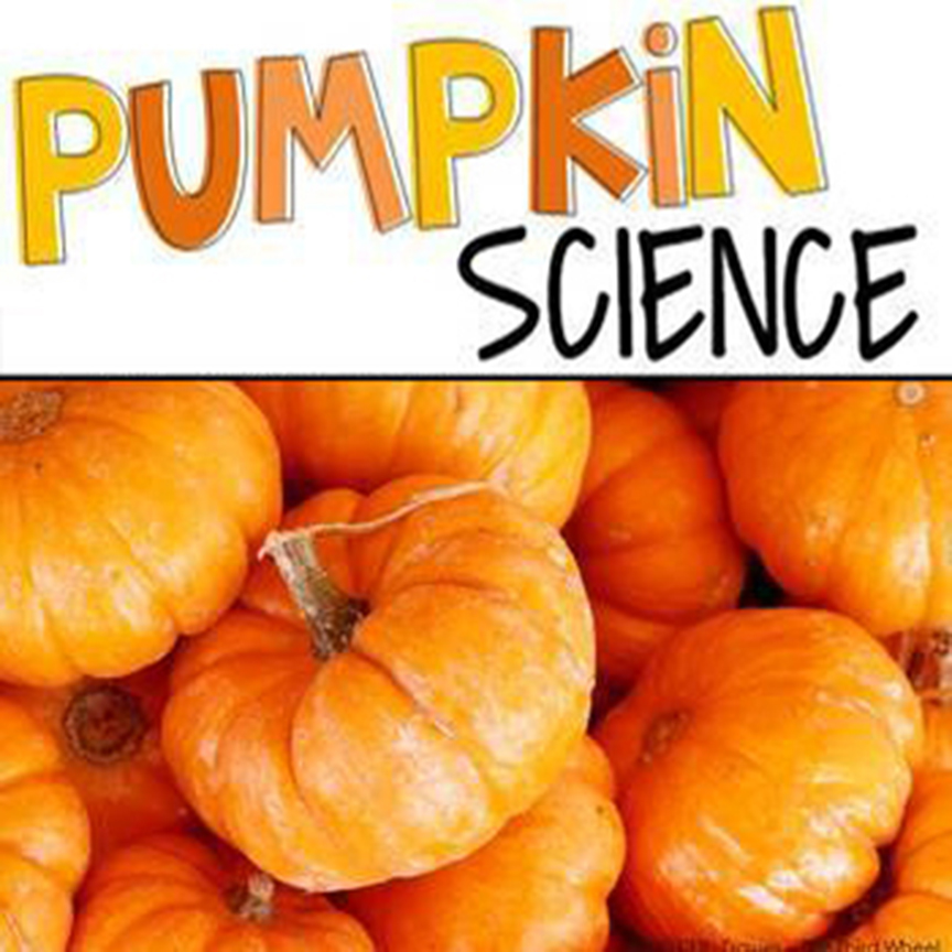 Full STEAM Ahead: Pumpkin Science