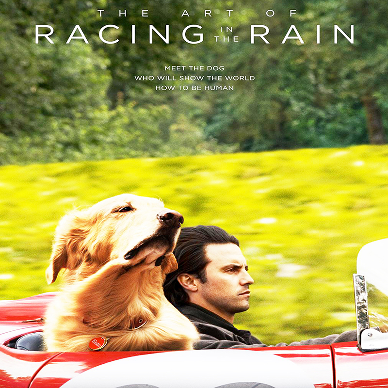New Movie of the Month: The Art of Racing in the Rain