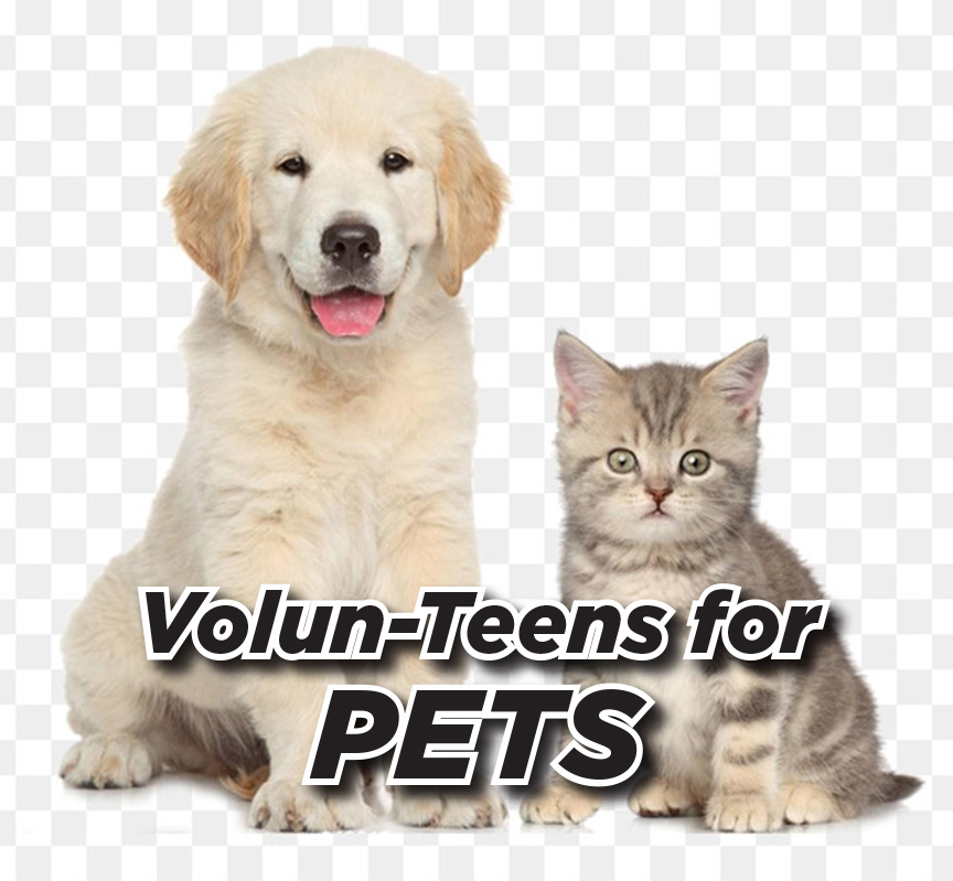 Volun-Teens for Pets