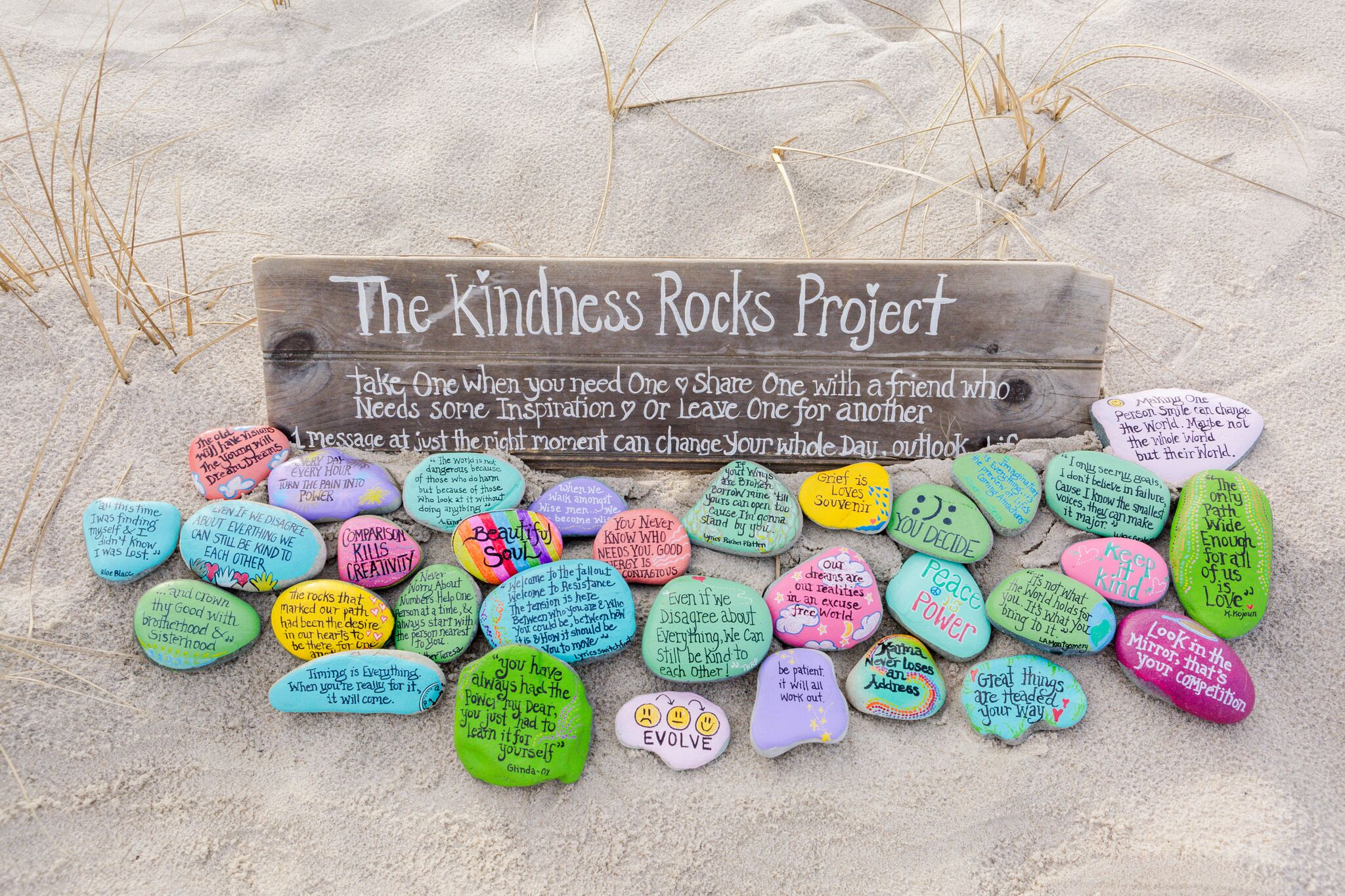The Kindness Rocks Project™in Ryder's Garden